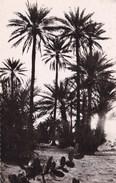 SENEGAL  RONIERS (dil181) - Senegal