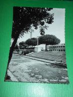Cartolina Sabaudia - Giardini Pubblici 1953 - Latina