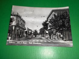 Cartolina Bellariva - Lido Di Rimini - Viale Rimembranza 1964 - Rimini