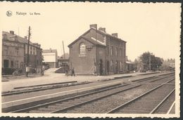 ** CPA - NATOYE - La Gare - Nels - Statie - Station  // - Hamois