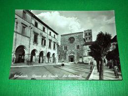 Cartolina Cittaducale ( Rieti ) - Piazza Del Popolo - La Cattedrale 1964 - Rieti