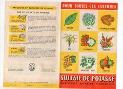 Prospectus SULFATE DE POTASSE 1956 (PPP5374) - Advertising