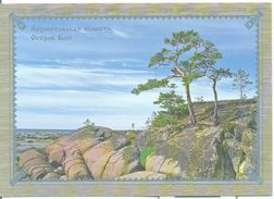"Russia 2009 Postal Card ""B"" Arhangelsk Region Solovetsky Islands Kiy Geography Places Landscape View Plant Tree - Unclassified"