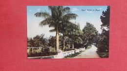 Royal Palms At Paget    Bermuda Ref-2610 - Bermudes