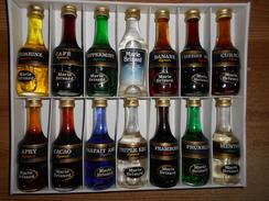 """14 Mignonnettes Liqueurs Différentes """"Marie Brizard"""" Dans Coffret Carton - Mignonnettes"""