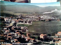 COLLEFERRO ROMA  SCORCIO VB1956 GC14305 - Italia