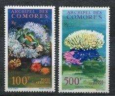 3007  - COMORES    PA 5/6 **  Faune Et Flore Marines          SUPERBE - Comores (1975-...)