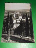 Cartolina Vidor ( Treviso ) - Verso Il Piave E Montello 1955 Ca - Treviso