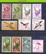 Mwe2472 FAUNA VOGELS ** SMALL ASSORTMENT ** BIRDS VÖGEL AVES OISEAUX SAHARA ESPANOL IFNI PF/MNH # - Konvolute & Serien