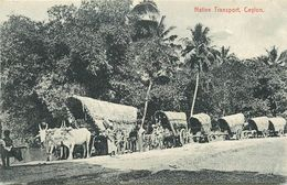 CEYLAN - SRI LANKA - ATTELAGES - TRANSPORT LOCAL - CARTE EN TRES BON ETAT. - Sri Lanka (Ceylon)