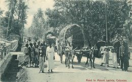 CEYLAN - SRI LANKA - COLOMBO - ROAD TO MONT LAYINIA - CARTE EN TRES BON ETAT. - Sri Lanka (Ceylon)
