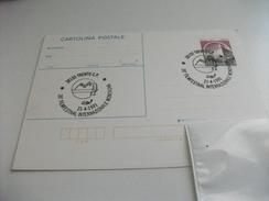 STORIA POSTALE Cartolina Postale ITALIA ANNULLO SPECIALE 39° FILMFESTIVAL INTERNAZIONALE MONTAGNA TRENTO - Cinema