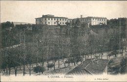 Italie  FIRENZE -   S CUORE - Firenze