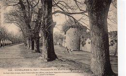 Guérande Animée La Promenade Du Mail Attelage - Guérande