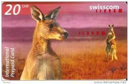 TARJETA DE SUIZA DE SWISSCOM DE 2 CANGUROS (KANGAROO-CANGURO)  - DATE EXPIRY 10/2004 - Switzerland