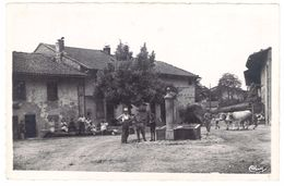 Cpsm Challes - Un Coin Du Village ( Fontaine, Boeufs ) - France