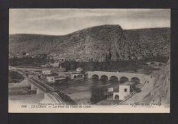 CPA .LE LIBAN . Les Ponts Du Fleuve Du CHIEN . - Liban