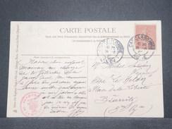 FRANCE - Type Semeuse Perforé MS Ou SM Sur Carte Postale De Chat En 1905 - L 8986 - Perforés
