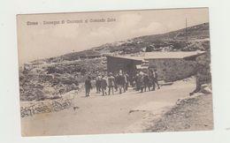 CIRENE (LIBIA ORIENTALE) CONVEGNO DI ONOREVOLI AL COMANDO ZONA- POSTA MILITARE 31.12.1914. POSTCARD - Libia