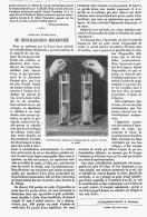 CRISTALISATION INSTANTANEE     1875 - Minéraux & Fossiles
