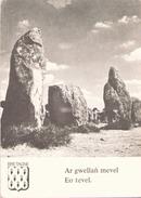 AR GWELLAN MEVEL EO TEVEL - Dolmen & Menhirs