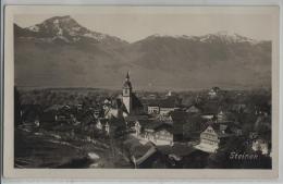 Steinen - Generalansicht - SZ Schwyz