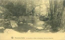 Environs D'AYWAILLE - NONCEVEUX-SEDOZ - Un Sous-Bois Au Vallon Du Ninglinspo. - Aywaille