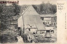 ENVIRONS DE HUY MOULIN DE MODAVE BELGIQUE 1900 - Hoei