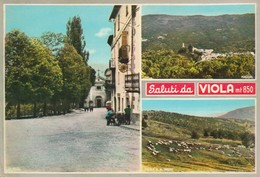 CUNEO - VIOLA - SALUTI DA........F5 - Cuneo