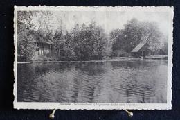 P 314 / Anvers  -  Liezele Schemerbert,  ( Algemeen Zicht Met Vijver )  /  Circulé  1952 - Puurs