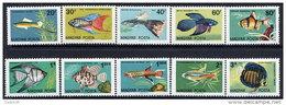 HUNGARY 1962 Ornamental Fish Set Of 10 MNH / **.  Michel 1820-29 - Ungheria