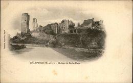 49 - CHAMPTOCE - Ruines Chateau - Carte Nuage - France