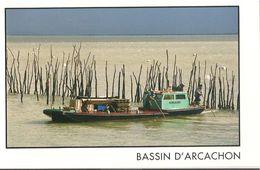 Bassin D'Arcachon :les Ostréiculteurs - Arcachon
