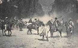 Chili Rodeo Chevaux - Chili
