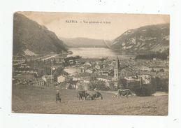 Cp , 01 , NANTUA , Vue Générale Et Le Lac , Agriculture , élevagr , Vaches , Voyagée 1907 - Nantua