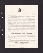 NEUFVILLES SOIGNIES Jules D'HERBAIS De THUN Et De CAMBRAI 42 Ans 1910 Famille De PELLAERT MALEINGREAU D'HEMBISE - Obituary Notices