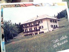 MUSIERA DI TELVE VALSUGANA ALBERGO LA RUSCOLETTA  VB1986  GC14366 - Trento