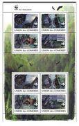 COMORES 2009 SHEET LES CHAUVES SOURIS BATS MORCEGOS MURCIELAGOS WILDLIFE WWF Cm9120a - Comoren (1975-...)