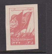 Afghanistan SG 375 1953 Pashtunistan Day 35p Red Imperforated MNH - Afghanistan