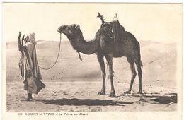 SCENES E TYPES LA PRIERE AU DESERT  ****    A  SAISIR ***** - Maroc