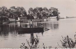 Cp , 40 , BISCARROSSE , Sur Le Lac - Biscarrosse