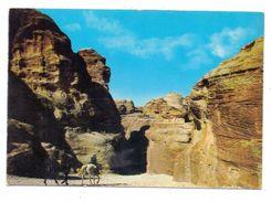 JORDAN / JORDANIEN - Essik, Main Entrance Petra - Jordanien
