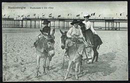 BLANKENBERGE - Promenade à Dos D'âne - Circulé - Circulated - Gelaufen - 1904. - Blankenberge