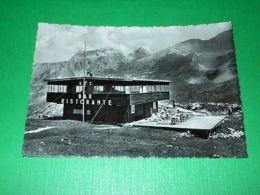 Cartolina Madonna Di Campiglio - Bar Ristorante Del Monte Spinale 1954 - Trento