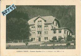 Veneto-belluno-frassene' Agordino  Veduta Albergo Trieste Anni 30/40 - Italia