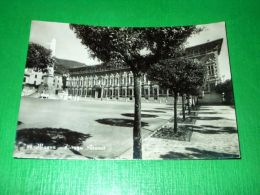 Cartolina Massa - Piazza Aranci 1952 - Massa