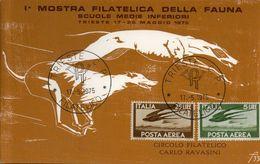 1975  TRIESTE 1°MOSTRA FILATELICA DELLA FAUNA  RONDINI  BOLAFFI / SASSONE - 6. 1946-.. Repubblica