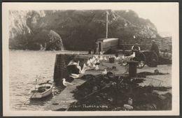 Gulls On The Breakwater, Mullion Cove, Cornwall, C.1950s - Hawke RP Postcard - Other