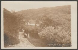 Coombe Valley Near Bude, Cornwall, 1928 - Thorn RP Postcard - Other