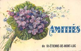 ¤¤  -  SAINT-ETIENNE-de-MONTLUC   -  Amitiés   -  Fleurs , Violettes  -  ¤¤ - Saint Etienne De Montluc